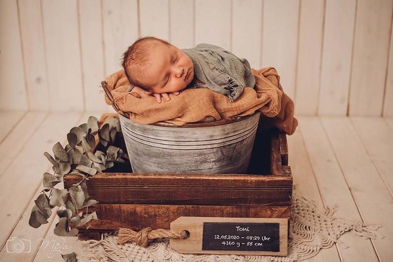 Neugeborenenfotos Landau