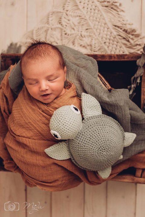 FotografLandau 684x1024(pp w480 h718) - Babyfotoshooting